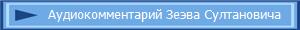 Аудиокомментарий Зеэва Султановича
